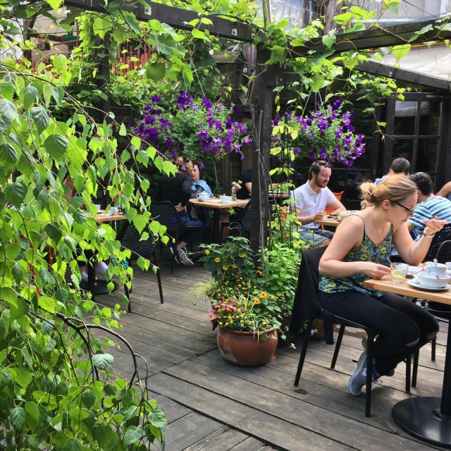 """Krakow beer garden and cafe"" stock image"