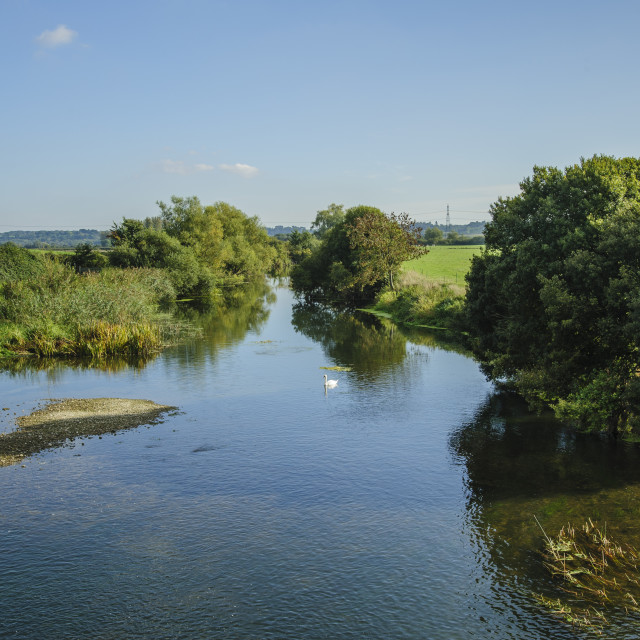 """""""River Stour, Dorset, seen from White Mill Bridge"""" stock image"""