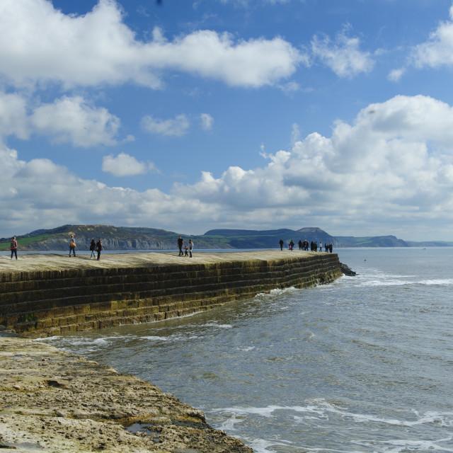 """Lyme Regis, the Cobb"" stock image"