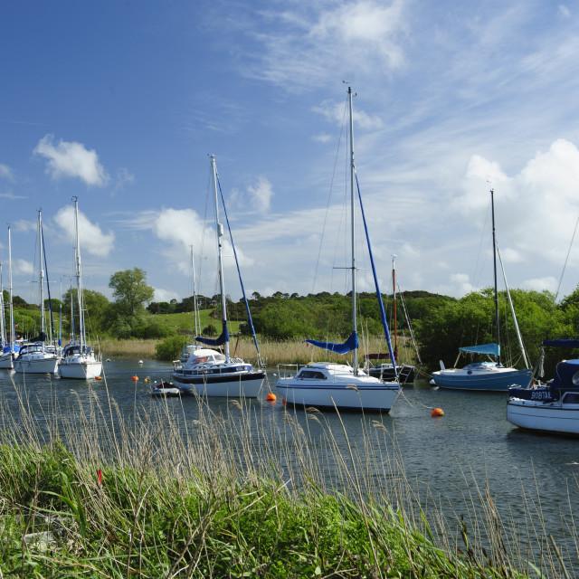 """River Frome, Wareham, Dorset"" stock image"