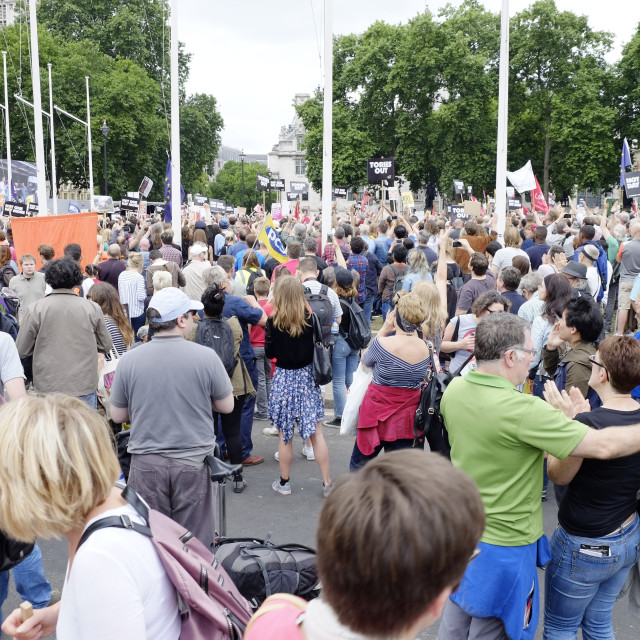 """""""Protesters at Parliament Square London"""" stock image"""