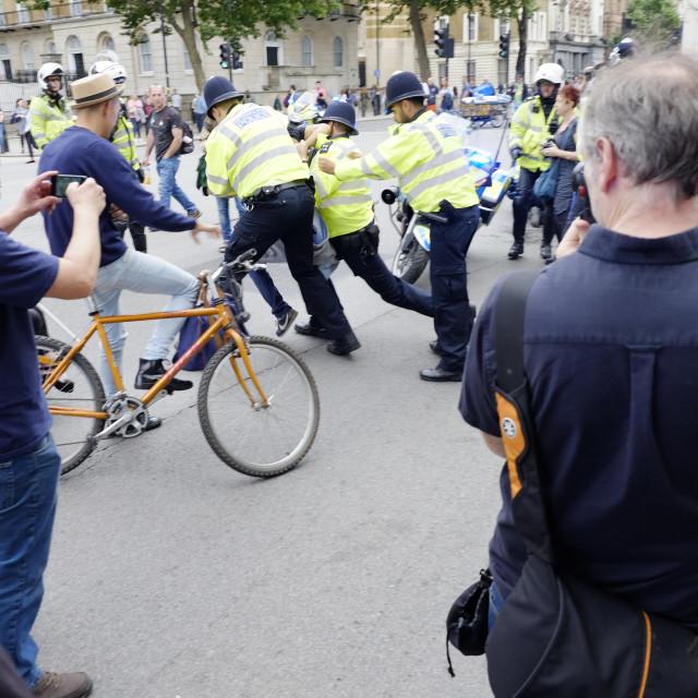 """""""London Metropolitan Police Arresting Protest"""" stock image"""