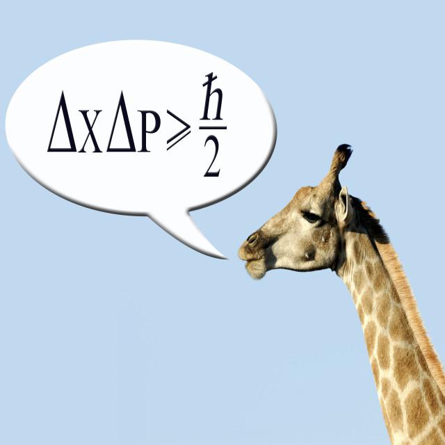 """Clever giraffe explains Heisenberg uncertainty principle."" stock image"