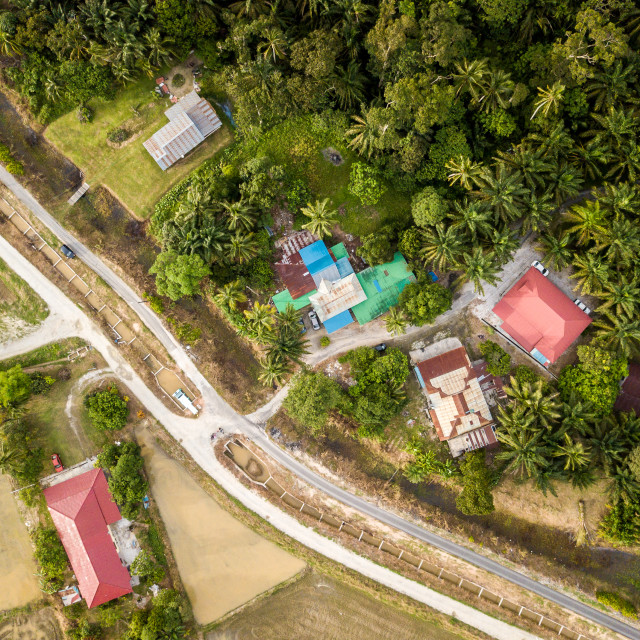 """""""Aerial View - Top down view of rural houses near a paddy field"""" stock image"""
