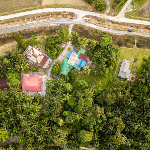 """Aerial View - Top down view of rural houses near a paddy field"" stock image"