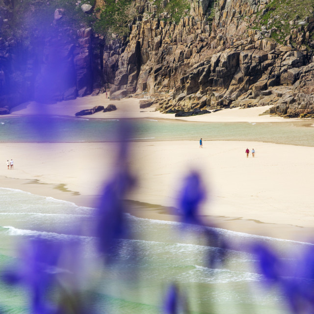 """The Granite cliffs of Porthcurno with bluebells in the foreground."" stock image"