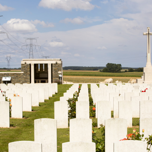 """First World War graves at a cemetary on the Somme, Northern France."" stock image"