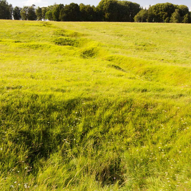 """""""Preserved trenches at Newfoundland Memorial Park, Beaumont Hamel,..."""" stock image"""
