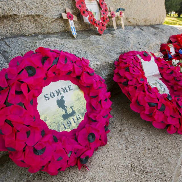 """Poppy memorial wreaths at the Newfoundland Memorial Park, Beaumont Hamel,..."" stock image"