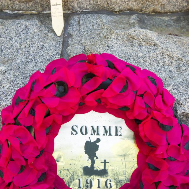 """Poppy memorial wreaths at the Newfoundland Memorial Park, Beaumont Hamel,..."" stock image"