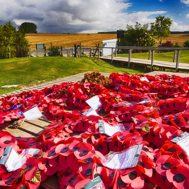 """Poppy wreaths at the Lochnagar Crater from the Battle of the Somme in the..."" stock image"