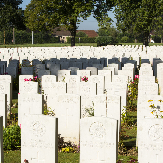 """""""The Delville Wood cemetery to British dead of the Battle of the somme at..."""" stock image"""