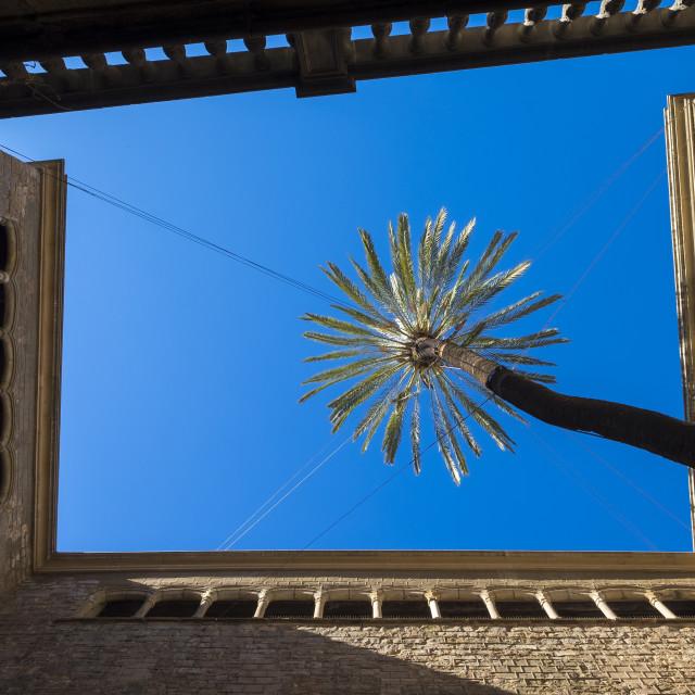 """Casa de l'Ardiaca, Historic archive of Catalonia building in Got"" stock image"
