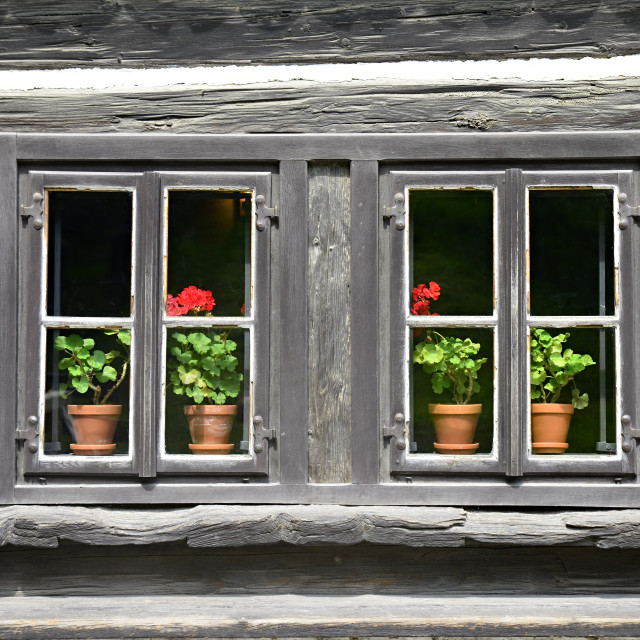 """""""old wooden window with flower"""" stock image"""