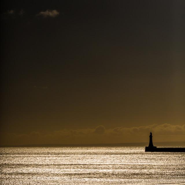 """""""Sunset shimmer"""" stock image"""