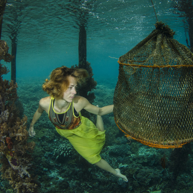 """Underwater story"" stock image"