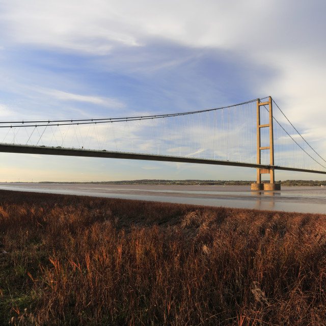 """""""Autumn, Humber Bridge, from Barton-upon-Humber village side, East Riding of..."""" stock image"""