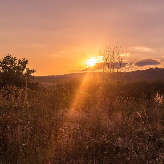 """Romantic sunset"" stock image"