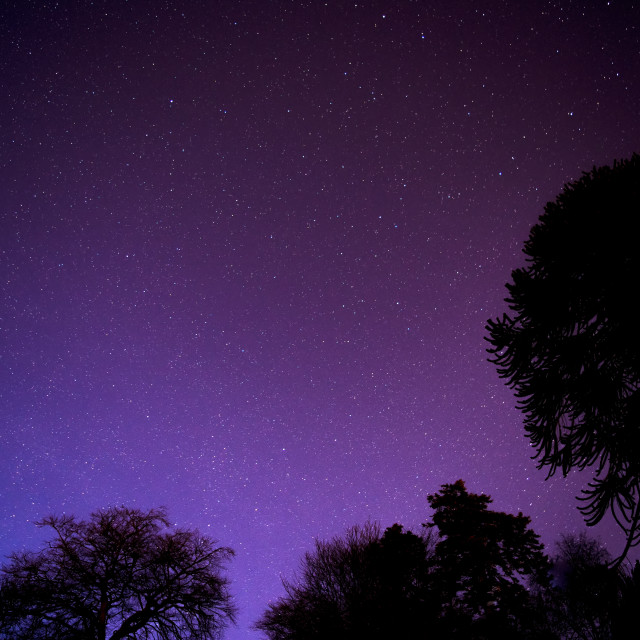 """""""The night sky"""" stock image"""