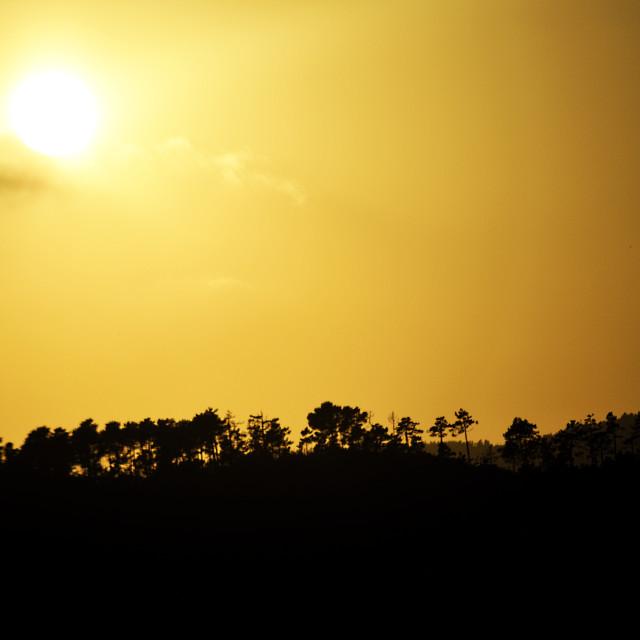 """Sunset in Toscane, Italy (Europe)"" stock image"