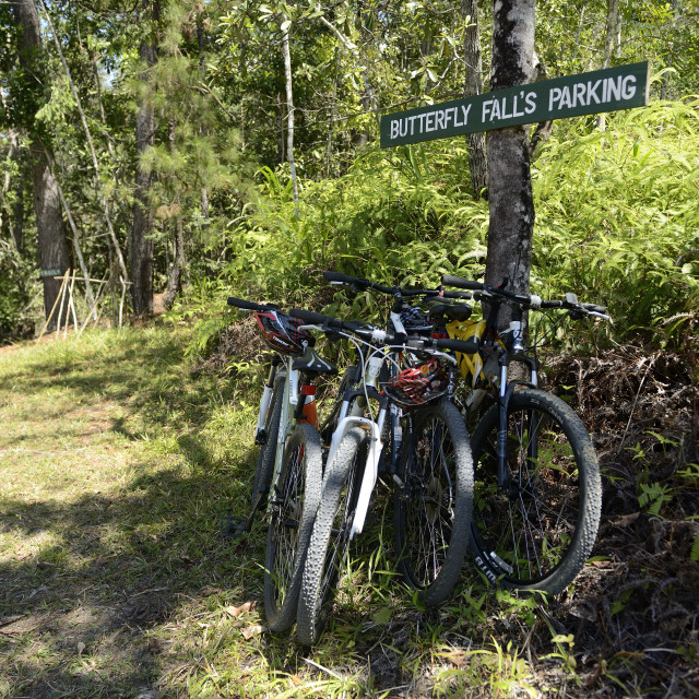 """Bicycles in the parking area on a trail"" stock image"