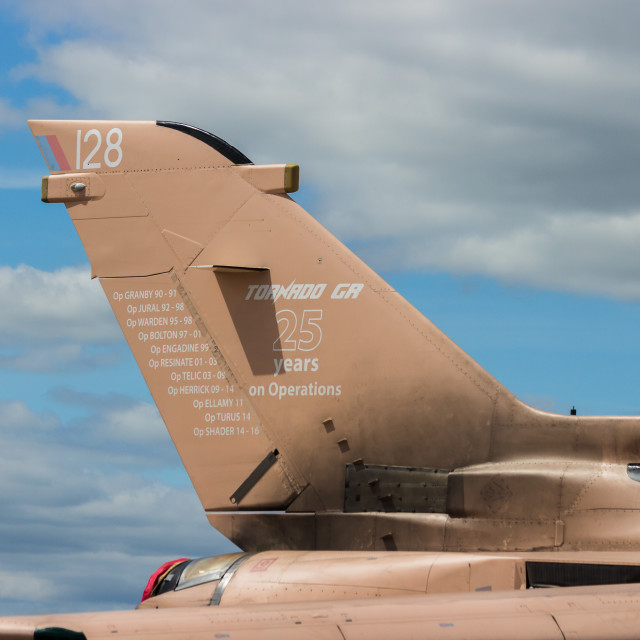 """""""RAF Tornado painted in Operation Granby scheme"""" stock image"""