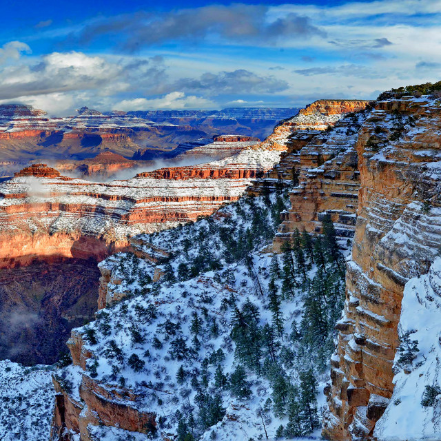 """Grand Canyon 17"" stock image"