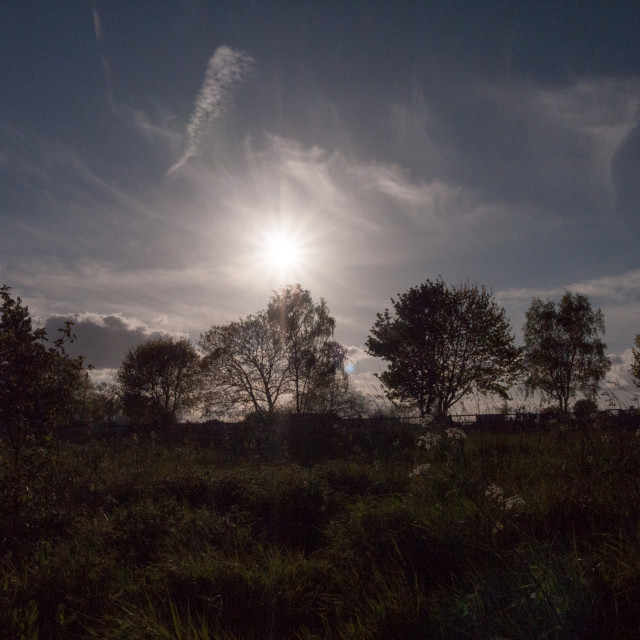 """""""the sun setting going down in the sky over tree tops and land with shrubs and..."""" stock image"""