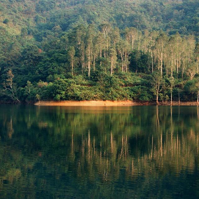 """""""Shing Mun Reservoir, Hong Kong"""" stock image"""