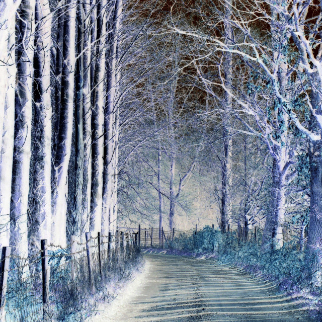 """Ghostly lane"" stock image"