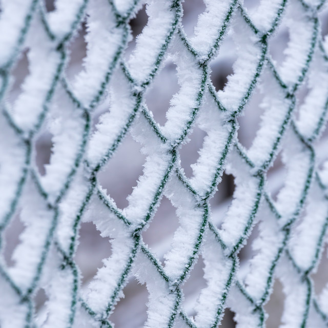 """Frozen fence on a cold winter day"" stock image"