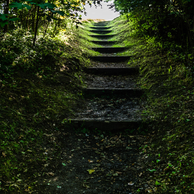 """Wooded Staircase"" stock image"