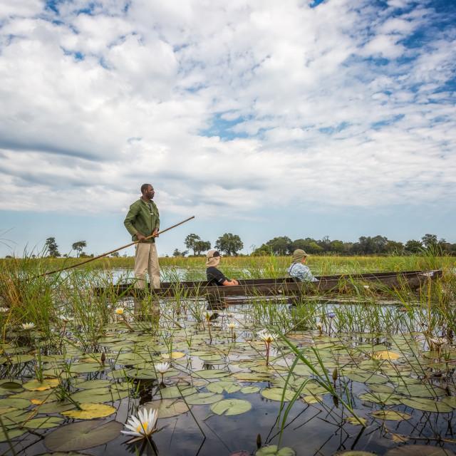 """""""Okavango Delta Poler"""" stock image"""