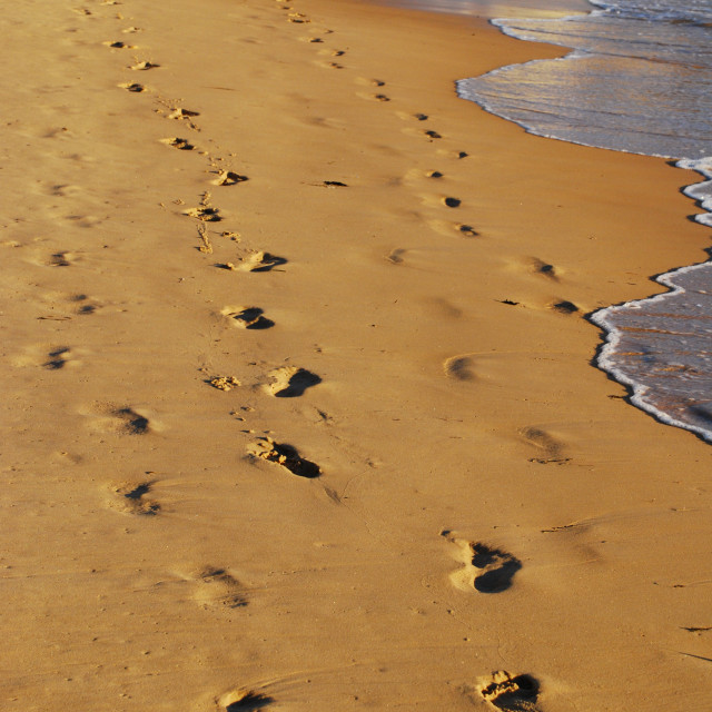 """Leave Only Footprints"" stock image"