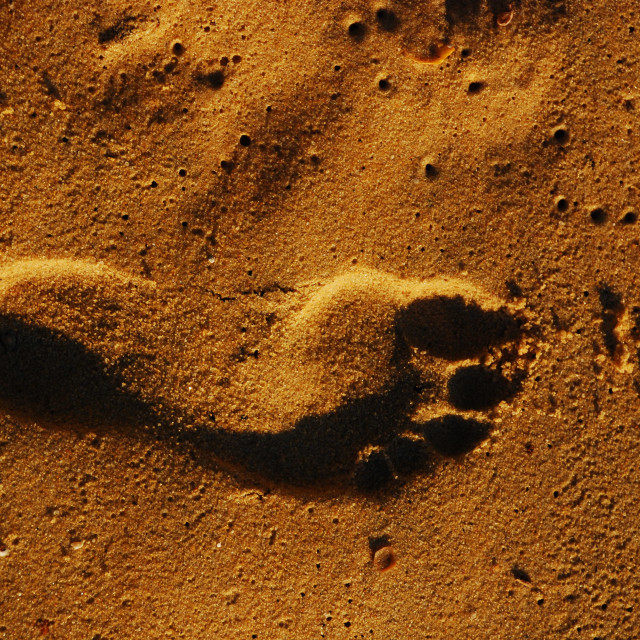 """Footprint"" stock image"