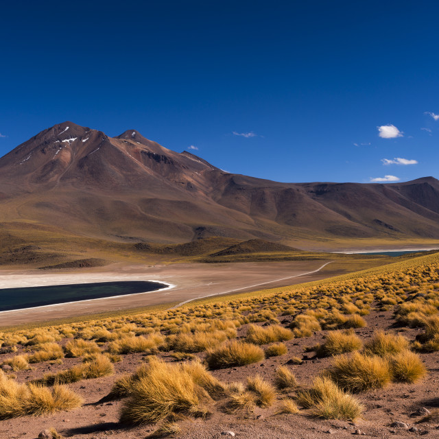 """The Miscanti Lake (Laguna Miscanti) with the surrounding mountains and volcano in the Atacama Desert, Chile, South America"" stock image"
