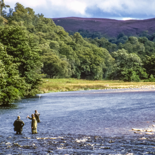 """Fly Fishing in Scotland"" stock image"