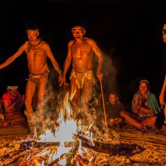 """""""San Bushmen Tribal Dance"""" stock image"""