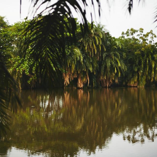 """Eastern Ghana"" stock image"