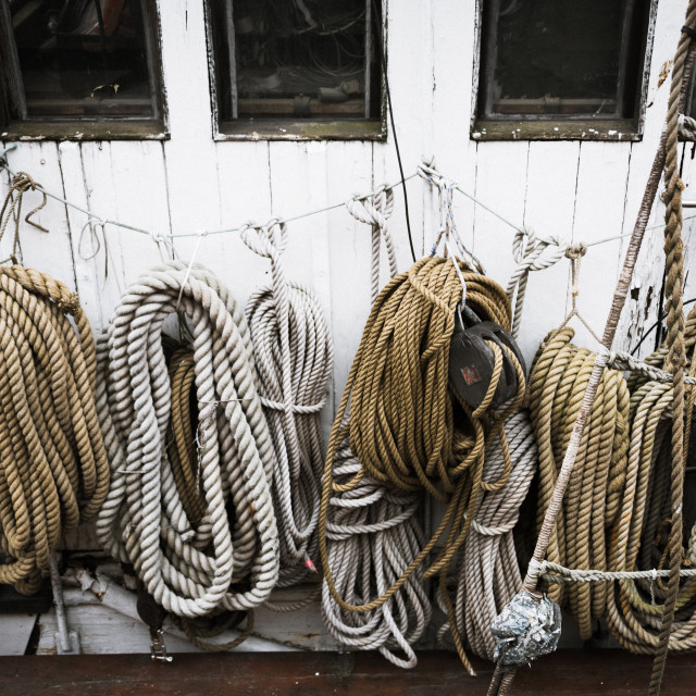 """Coiled ropes on a boat"" stock image"
