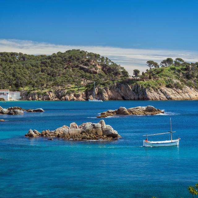 """Detail of the Spanish coast at summer (Catalonia,Costa Brava)"" stock image"