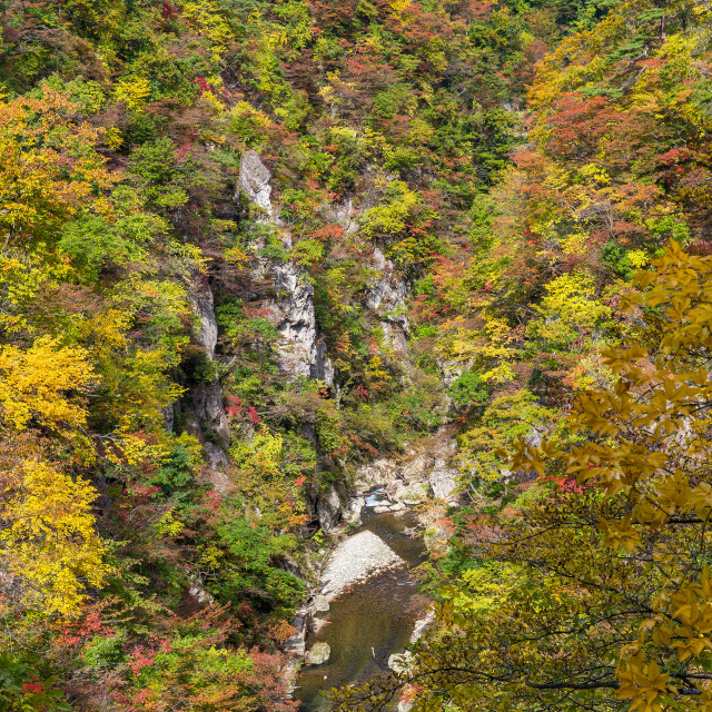 """Naruko Gorge in Japan"" stock image"