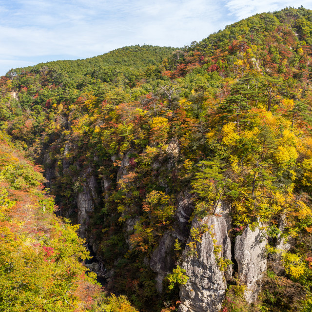 """Naruko canyon with autumn foliage"" stock image"