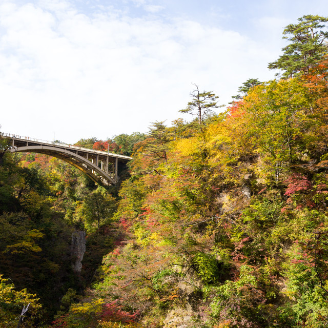 """Bridge in Naruko Gorge of Japan"" stock image"