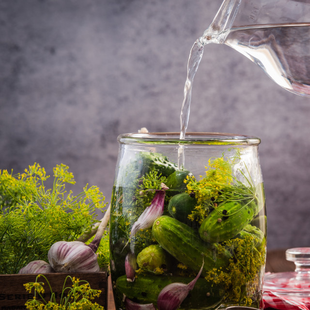 """""""Glass jar with pickled cucumbers and gherkins"""" stock image"""
