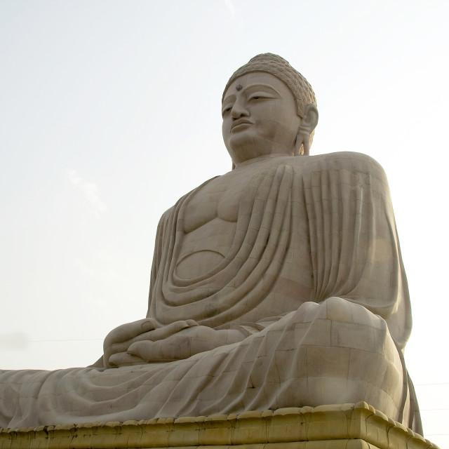 """Serene Sitting Buddha"" stock image"
