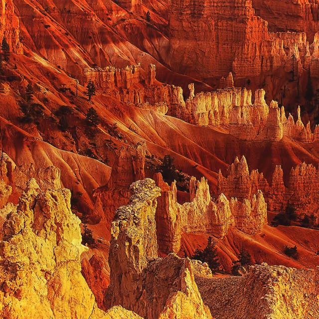 """Bryce Canyon 14"" stock image"