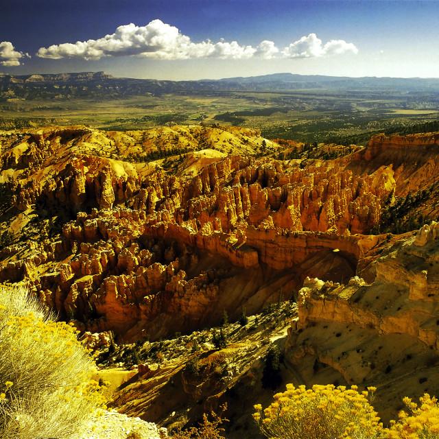 """Bryce Canyon 26"" stock image"