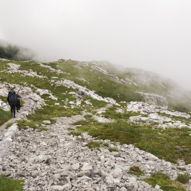 """""""Two Hikers Walking on the Mountain Trail"""" stock image"""