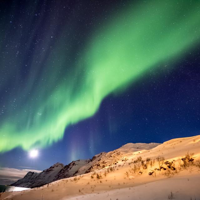 """Aurora Borealis in Tromso, Norway in front of Norwegian fjord at winter"" stock image"